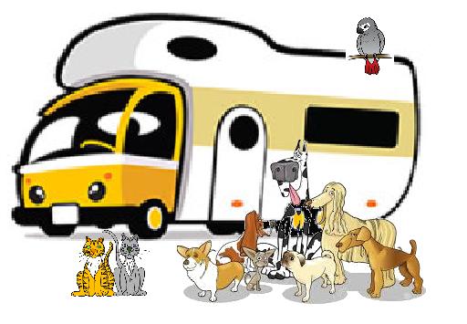 Animals Aboard